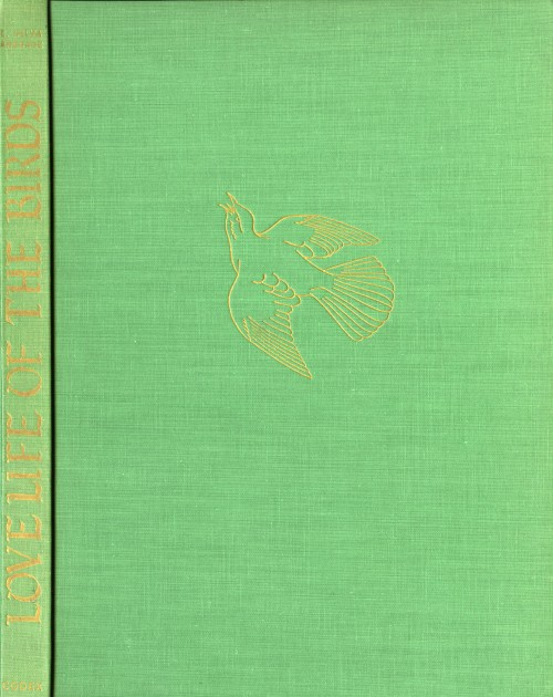 spine and front cover