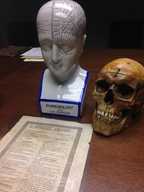 Phrenology model and Human Skull
