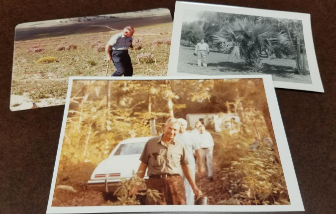 Three images of Lynn R. Lowery outside among plants.