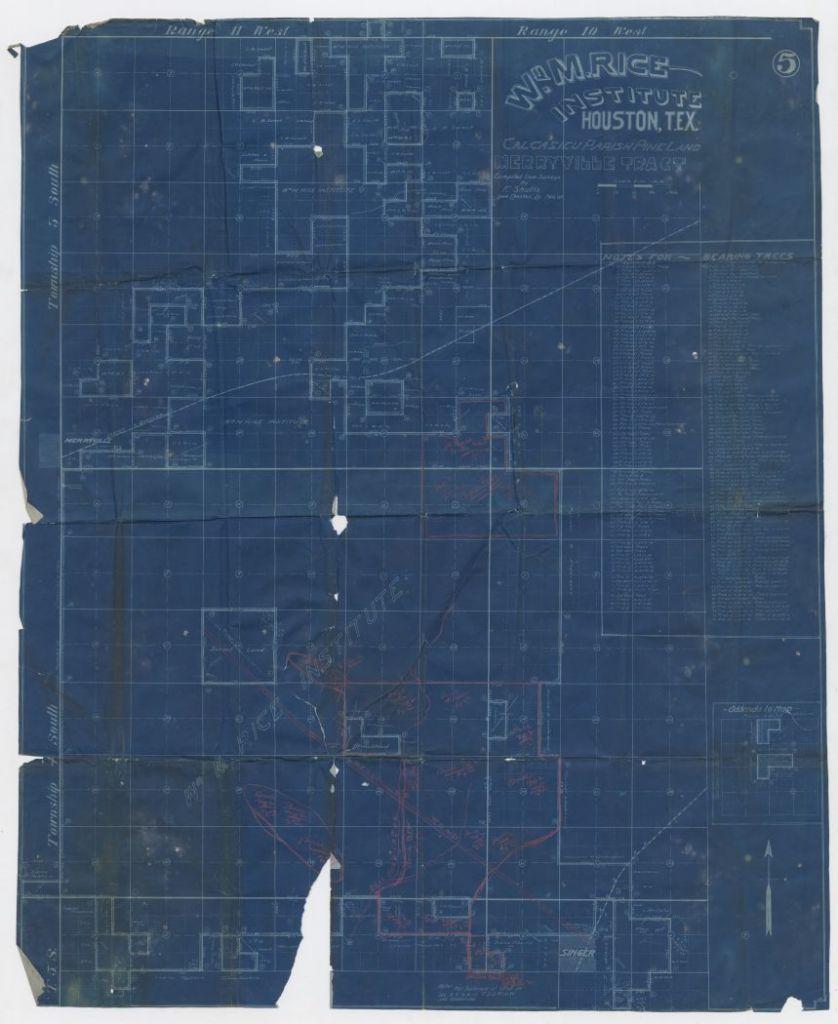 William Marsh Rice Institute Calcasieu Parish pine land, Merryville tract, 1907